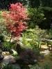 chelsea-flower-show-005