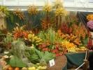 chelsea-flower-show-049
